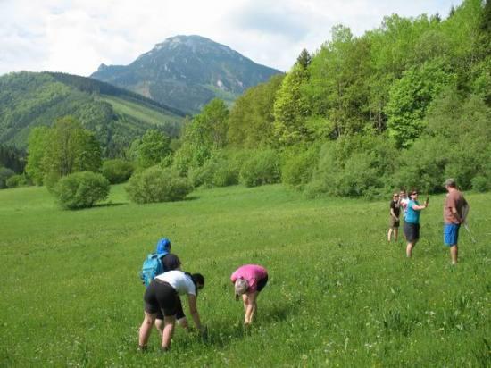 Resize of 33 Chocske vrchy