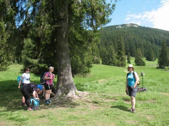Resize of 38 Chocske vrchy